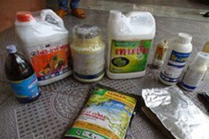 Đồng Nai: Phát hiện 14 tấn sầu riêng nghi ngờ bị ngâm, tẩm hóa chất