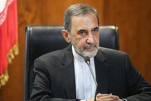 Argentina đề nghị Nga dẫn độ một cựu quan chức Iran đang ở Moscow