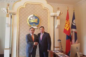 Thứ trưởng Ngoại giao Lê Hoài Trung thăm và làm việc tại Mông Cổ