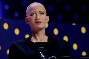 Sophia bị nghi ngờ chỉ là một con rối, không phải một AI đúng nghĩa