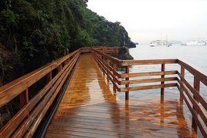 Dự án đảo Soi Sim, vịnh Hạ Long: Không xẻ núi, bê tông hóa đảo