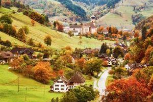 Bắt trọn khoảnh khắc mùa Thu Âu – Mỹ
