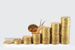 Nội lực và khát vọng huy động vốn