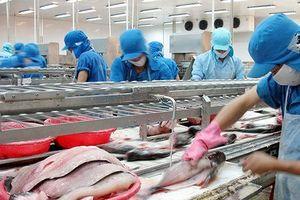 VHC: Xuất khẩu 6 tháng đầu năm đạt 163 triệu USD