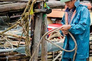 Dân Nghệ An đội mưa chạy đua với bão số 3 đổ bộ để cứu tài sản