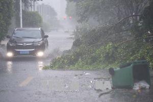 Bão Sơn Tinh tràn vào đảo Hải Nam, giao thông đường sắt và đường biển đình trệ