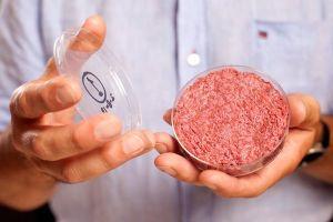 Sản xuất 'thịt tổng hợp' từ tế bào động vật gây tranh cãi