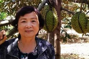 Thương lái săn đón sầu riêng sạch hạt lép ở Đồng Nai
