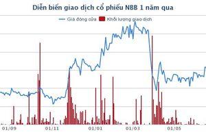 Sau sự cố cháy Carina, CII liên tiếp gom mua cổ phiếu NBB