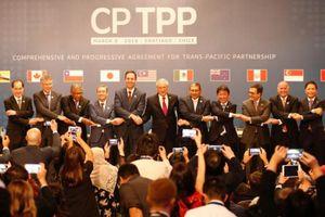 Nước thứ ba phê chuẩn CPTPP
