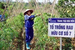 Nông nghiệp giá trị cao ở vùng đất 'khó'