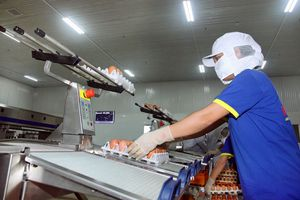 Sản xuất nông nghiệp Hà Nội: Đối diện không ít thách thức