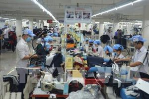 Thị trường việc làm Việt Nam có nhiều triển vọng phát triển