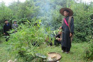Hà Giang: Lễ ra đồng (pặt oong) của dân tộc Pu Péo