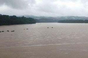 Hơn 2.500 hộ dân ở Yên Bái phải di dời tạm thời do mưa lũ