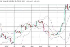 Bitcoin thống lĩnh thị trường tiền số tháng 7