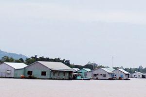 Dân nuôi cá bè trên sông Hậu bức xúc với dự án nạo vét thông luồng