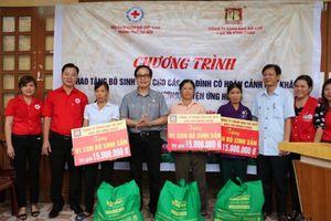 Hội Chữ thập đỏ TP Hà Nội trao bò giống cho hộ nghèo