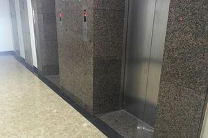 Gặp chó trong thang máy, cháu bé 2 tuổi khóc thét