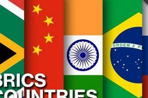 Chuyên gia Ấn Độ kêu gọi BRICS đoàn kết đối phó chủ nghĩa bảo hộ