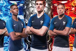 Lỡ hứa nếu Pháp vô địch sẽ hoàn lại tiền, công ty đồ gia dụng lỗ gần 300 tỷ