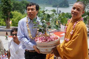 Đến chùa Tam Chúc ngắm cây Bồ Đề thiêng
