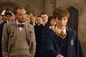 10 chi tiết thú vị được hé mở trong trailer 'Fantastic Beasts 2'