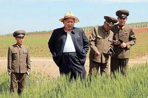 Triều Tiên dồn dập kêu gọi dân chúng thắt lưng buộc bụng