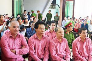 Phiên xét xử thứ 2 'đại án' phá rừng Bình Định: Trả hồ sơ yêu cầu cơ quan điều tra bổ sung