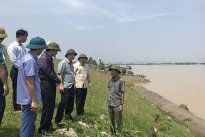 Yêu cầu xử lý ngay sự cố đê, kè Cổ Đô tại huyện Ba Vì