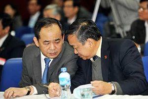 Vì sao ông Trần Đình Long từ chối làm Chủ tịch VFF? 