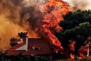 Cháy rừng ở Hy Lạp nhấn chìm mọi thứ trong biển lửa kinh hoàng