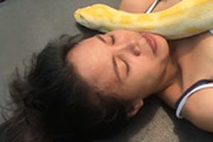 Thót tim xem trăn 50 kg massage cho cô gái