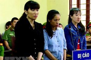 TP.HCM: Chủ cơ sở Mầm Xanh bạo hành trẻ em lĩnh án 3 năm tù giam