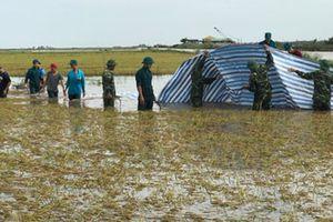 Nông dân thiệt hại nặng vì mưa dầm