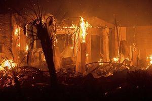 Cháy rừng, 12 nghìn cư dân phải di tản