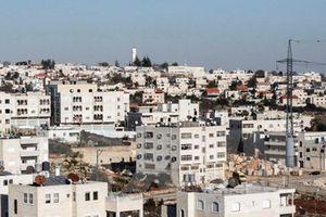 Israel sẽ xây hàng trăm nhà định cư mới sau vụ tấn công bằng dao