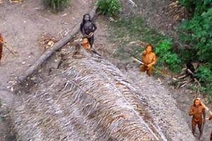Bên trong thế giới của những bộ lạc nguyên thủy ở rừng Amazon