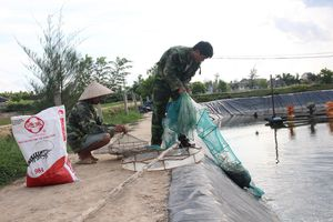 Tam nông ở Hà Tĩnh - Bài cuối: Chính sách là bệ đỡ