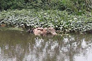 Thi thể người đàn ông nổi trên hồ nước ở Quảng Nam
