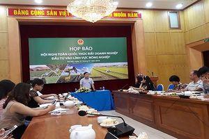 'Thúc đẩy doanh nghiệp đầu tư vào lĩnh vực nông nghiệp'