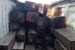 Bắt tạm giam 1 phó giám đốc trong vụ container chở 40m3 gỗ lậu ở Gia Lai