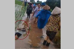 Hà Nam: Đi làm đồng, bàng hoàng phát hiện thi thể người đàn ông