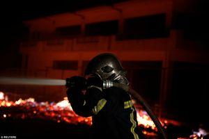 Thảm họa cháy rừng ở Hy Lạp: Có kẻ cố ý phóng hỏa?