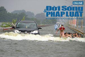 Hà Nội: Bất chấp nguy hiểm, trẻ em 'hồn nhiên' bơi lội giữa đường tỉnh lộ