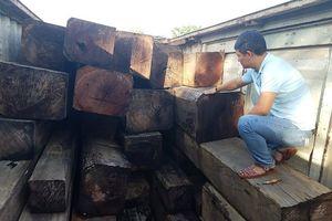 Gia Lai: Bắt giữ xe container chở gần 50m3 gỗ lậu