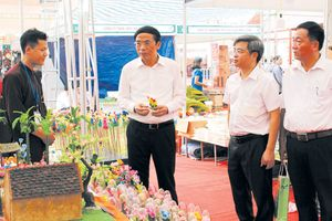 Phú Xuyên vững bước hội nhập