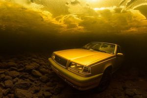 Kinh ngạc trước những bức ảnh chụp dưới lòng đại dương
