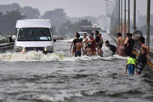 Thanh niên bơi lội trêu đùa xe cộ trong làn nước lũ