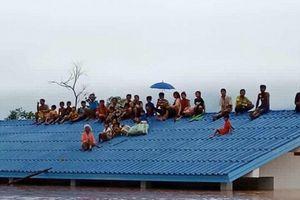 Chùm ảnh toàn cảnh vụ vỡ đập thủy điện ở Lào